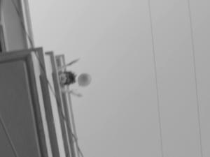 Screen shot 2015-11-07 at 1.51.13 PM
