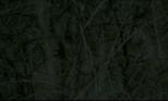 Screen Shot 2018-03-06 at 10.33.07 PM